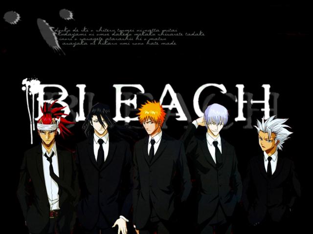 Bleach, de Tite Kubo Bleach